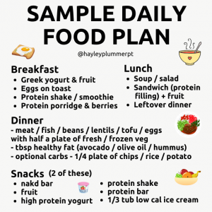 sample daily food plan
